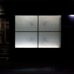 """""""Lebendig im Kristall"""" site-specific installation at Die Diele, Zürich, 2016"""